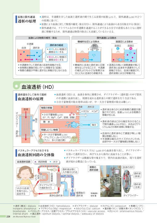 高い 尿素 窒素