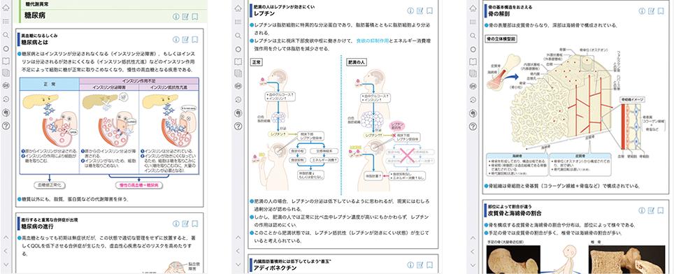 vol.3 糖尿病・代謝・内分泌