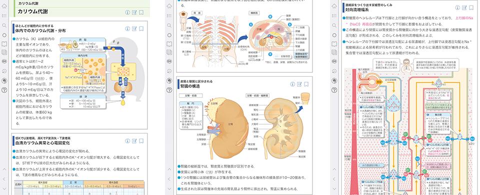 病気がみえる vol.8 腎・泌尿器